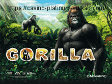Бесплатный автомат Gorilla