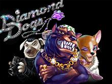 Играть в автоматы Diamond Dogs